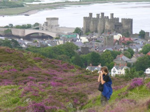 The Castle from Conwy mountain